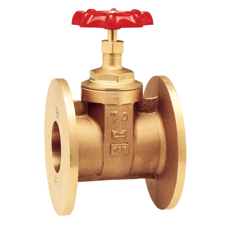 FLANGED GATE VALVE شیر فلنچی سیم ایتالیا